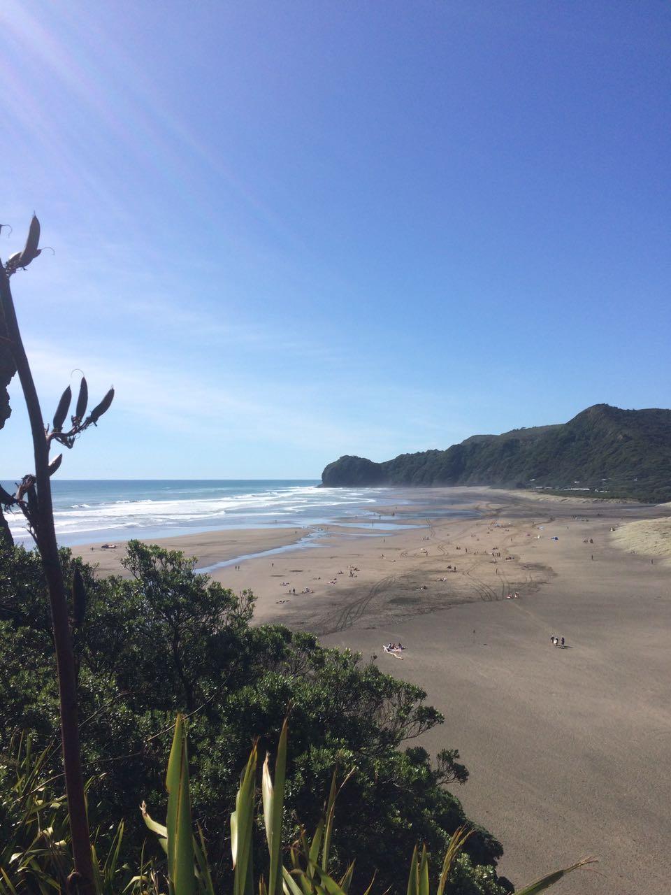 o que fazer na nova zelândia piha beach