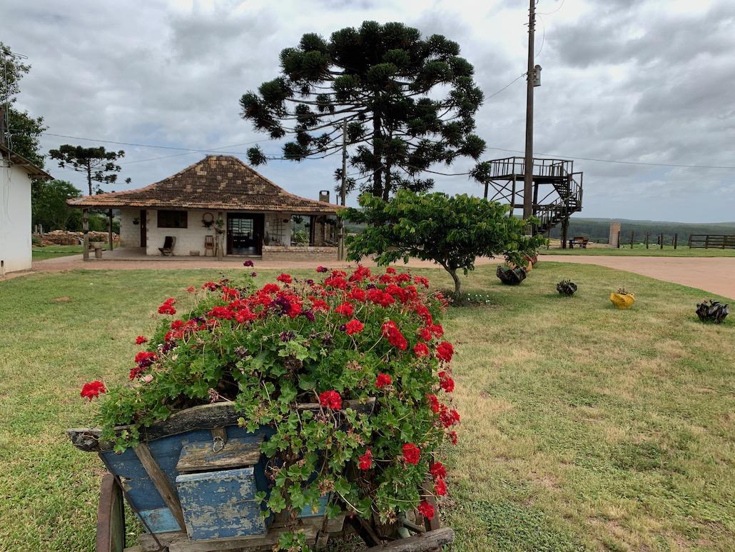 jardim com carrinho de mão e flores