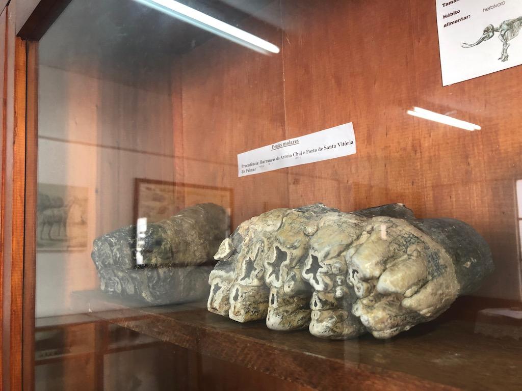 acervo do museu de santa vitória do palmar