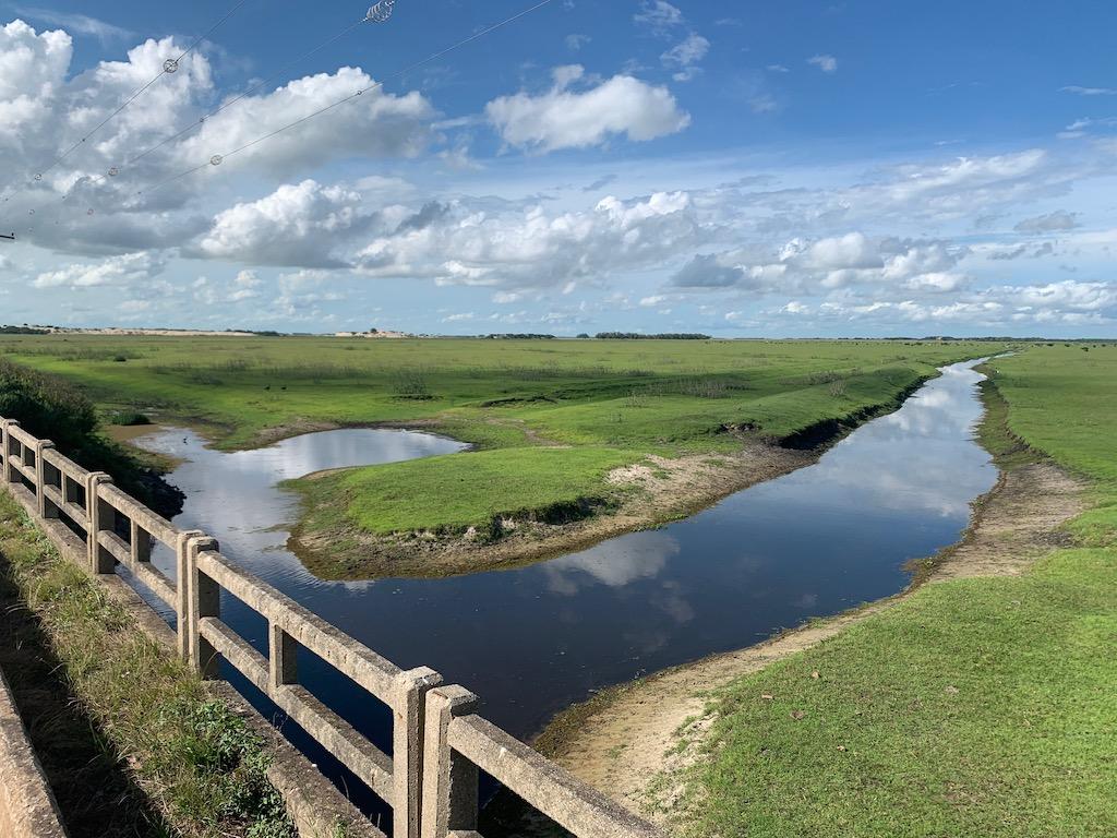 vista de campo verde com laguinho