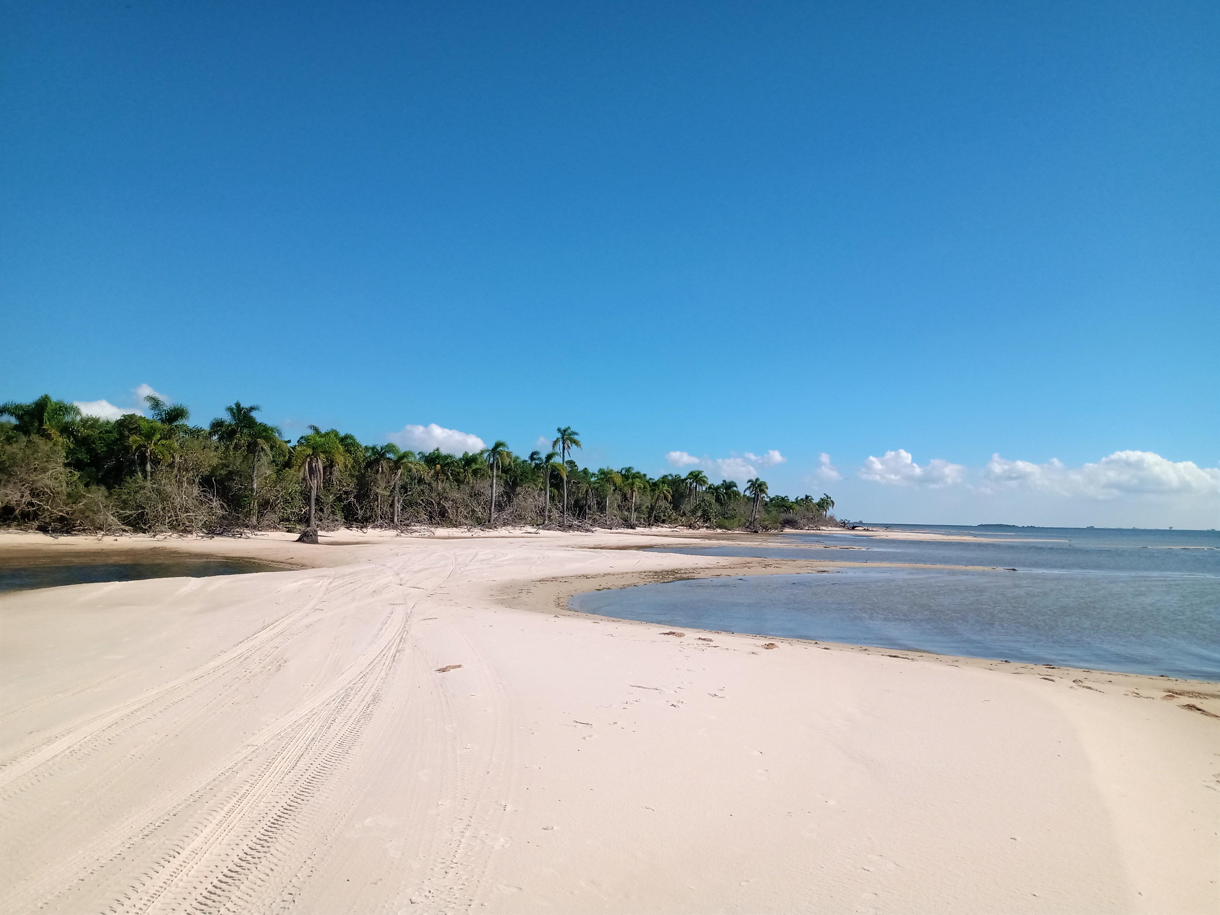 faixa de areia em frente à lagoa e coqueiros ao fundo