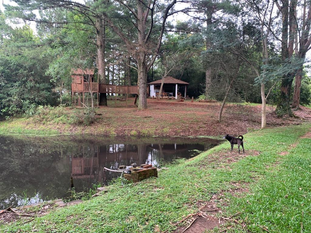 lago, um cachorro e quiosque ao fundo